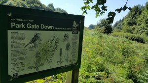 Walks And Walking - Lyminge Forest Walk In Kent - Park Gate Down Nature Reserve