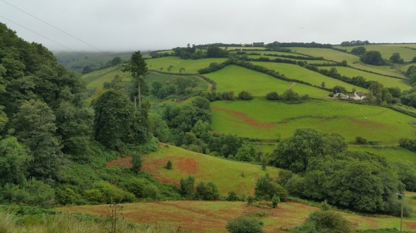 HF Holidays 11 Mile Linear Hard Walk to Dunkery Beacon - View Out To Exmoor National Park