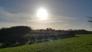 Walks And Walking - Densole Walk In Kent