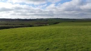 Walks And Walking - Winchelsea Walk in East Sussex - 1066 Country Walk