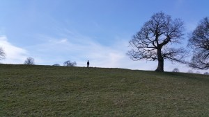 Darwin Forest Country Park Walks - Bakewell To Chatsworth House - Calton Lees