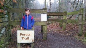 Darwin Forest Country Park Forest Trail