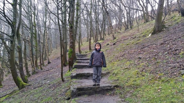 Darwin Forest Country Park Walks - Elam To Abney - Beech Hurst