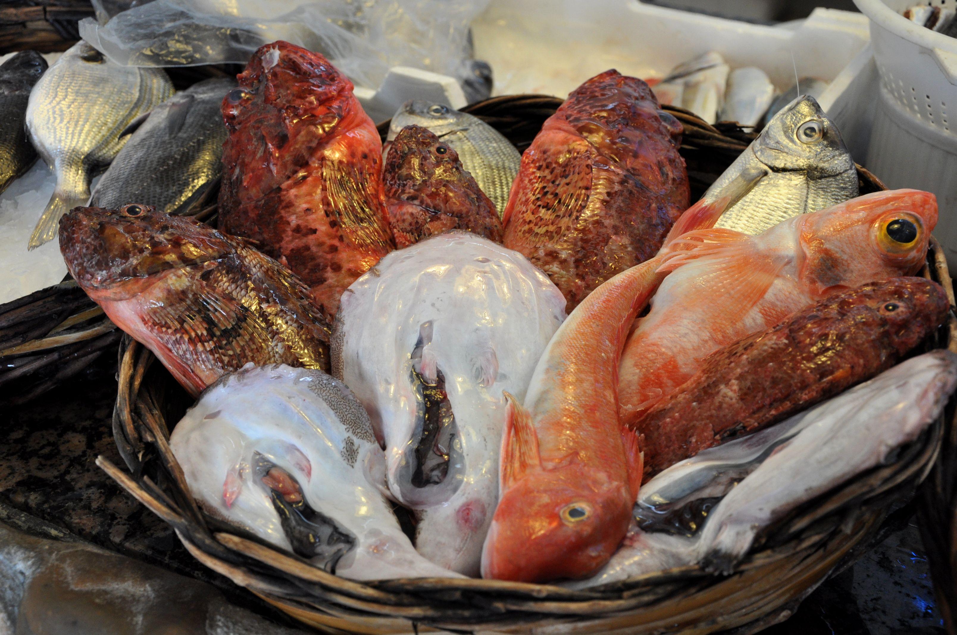 Italian christmas fish