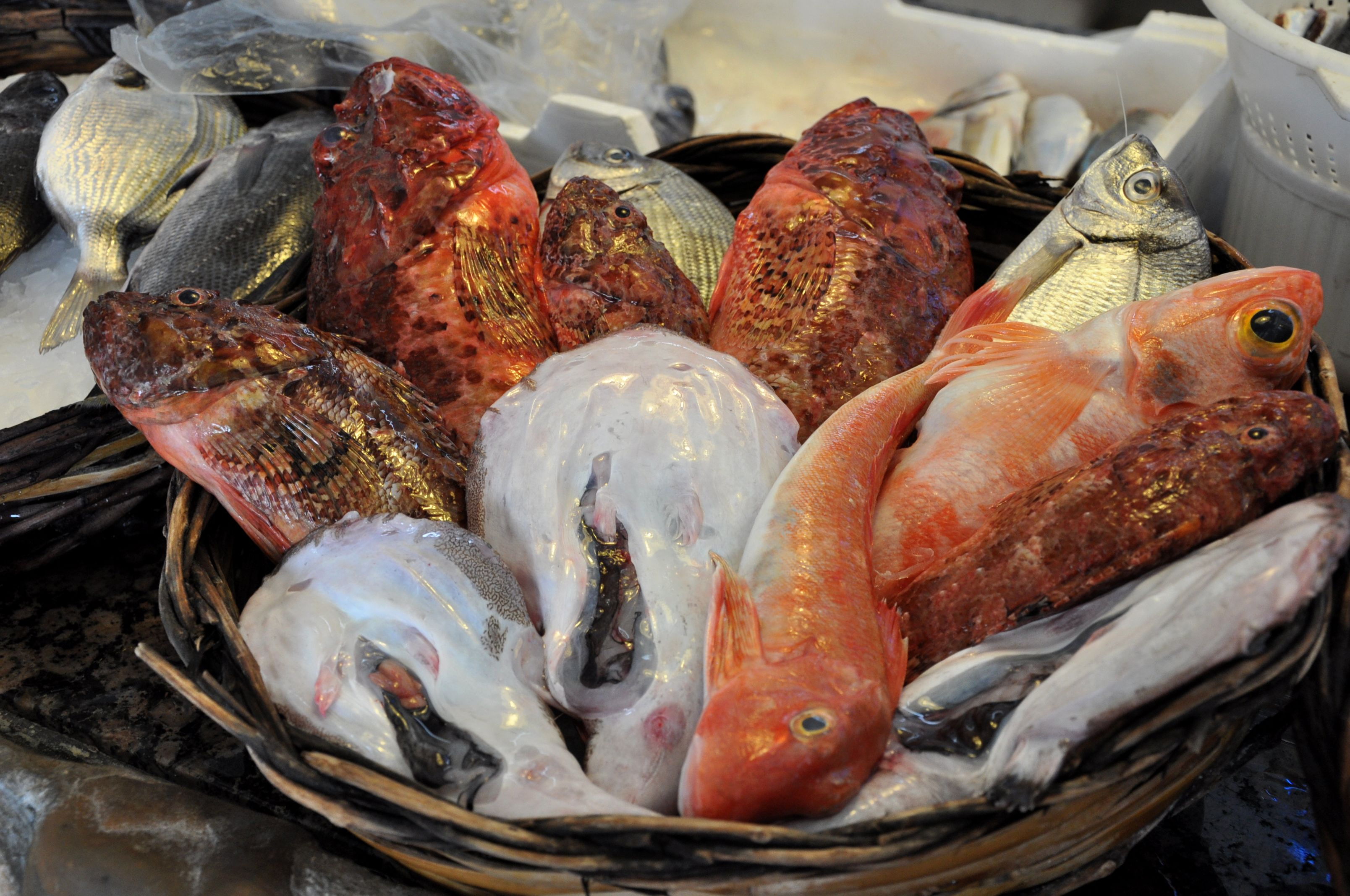 Eating Fish in Italy: What You Need to Know