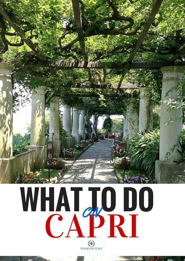 The gardens of Villa San Michele are one of the best things to see on the Island of Capri. Find out other amazing things to see and do on Capri over at the Walks of Italy blog.