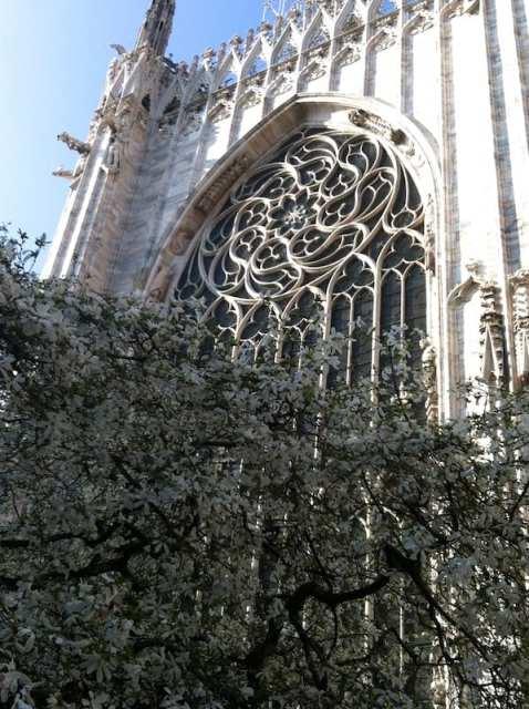 Springtime at the Duomo