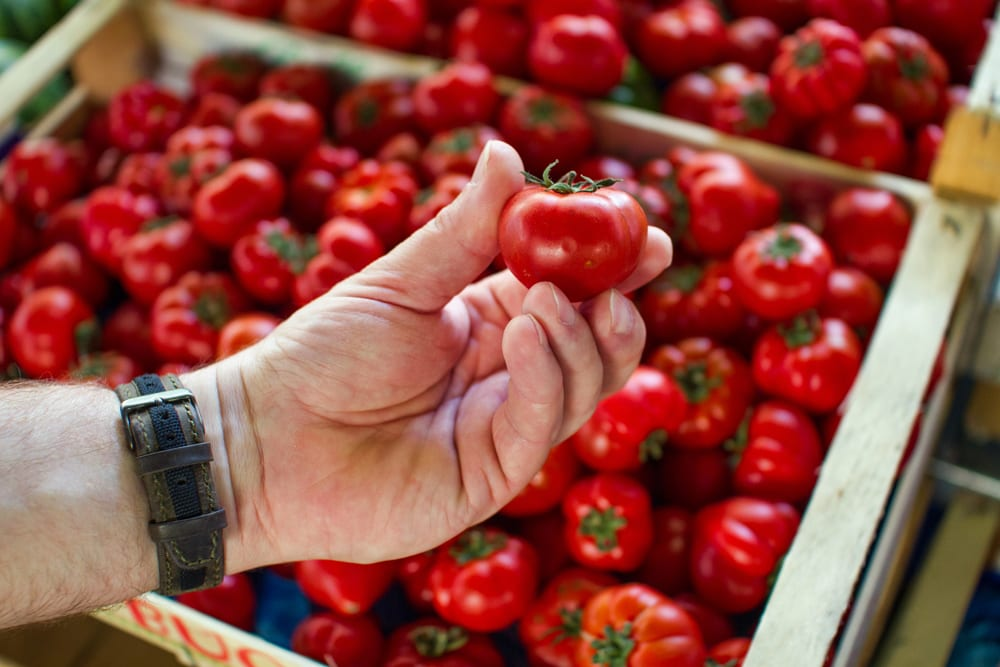 A ripe Italian tomato is definitely worthy of a photo!
