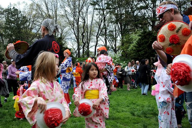 Sakura MatsuriBrooklyn Botanic Gardenu0026#39;s Japanese Cultural Festival