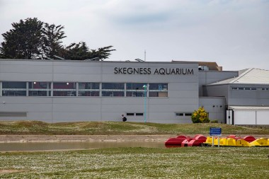 Skegness aquarium (5 of 5)