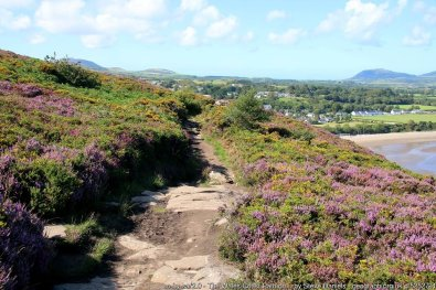 Walk the Wales Coast Path from Abersoch to Pwllheli