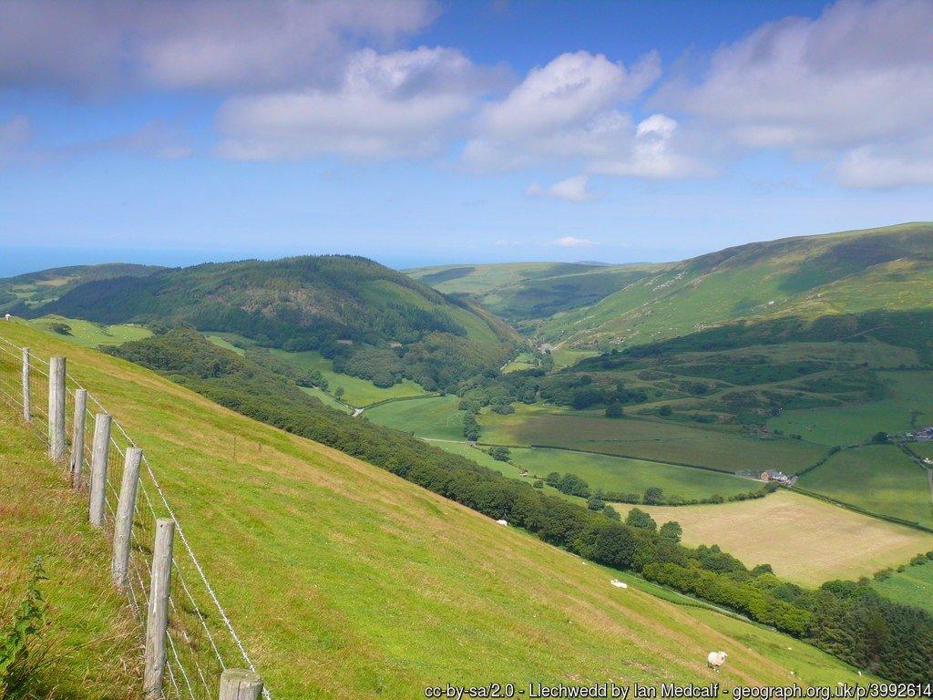 Llechwedd Ffens ar dop yr allt / Fence at the top of the hillside.