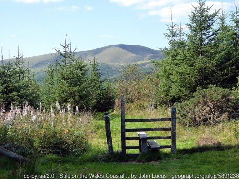 Stile on the Wales Coastal Path At the boundary between forestry on Foel Gôch and open heath.