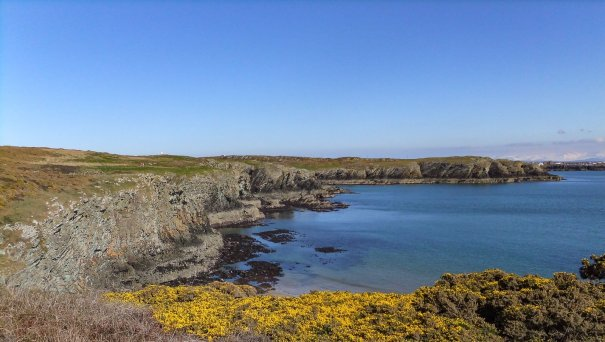Rhoscolyn. South Stack 148