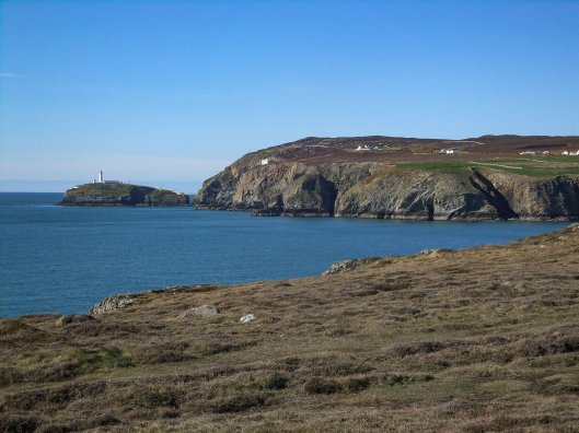 Rhoscolyn. South Stack 194