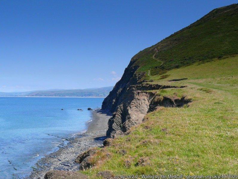 Wallog Llwybr yr Arfordir / The coast path.