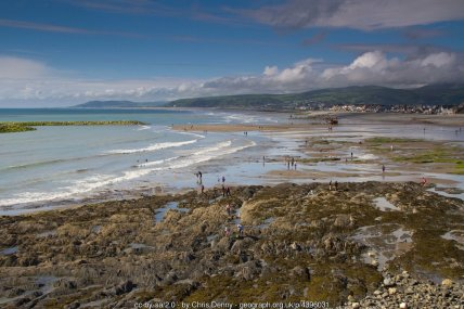 The busy beach at Borth It's a very low tide, an idyllic summer's day and there are dozens of people on the beach, exploring the rock pools, paddling or simply walking. Borth at its best.