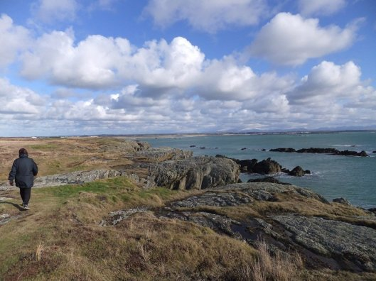 10 Best Circular Walks on the Anglesey Coast