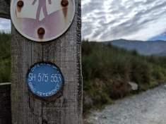 Snowdon_Ranger_Path_28