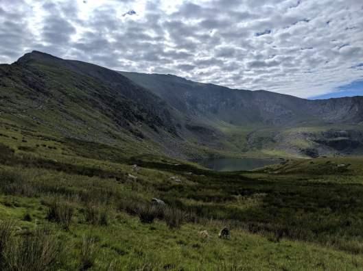 Snowdon_Ranger_Path_39