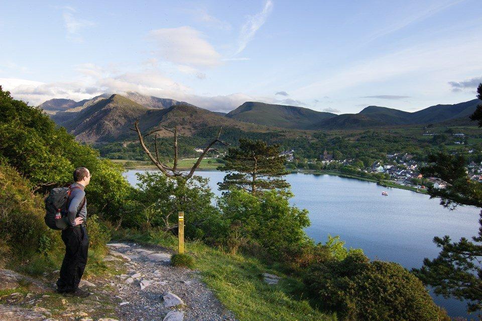 Easy Family Walks in Snowdonia - Padarn Country Park Woodland Walk