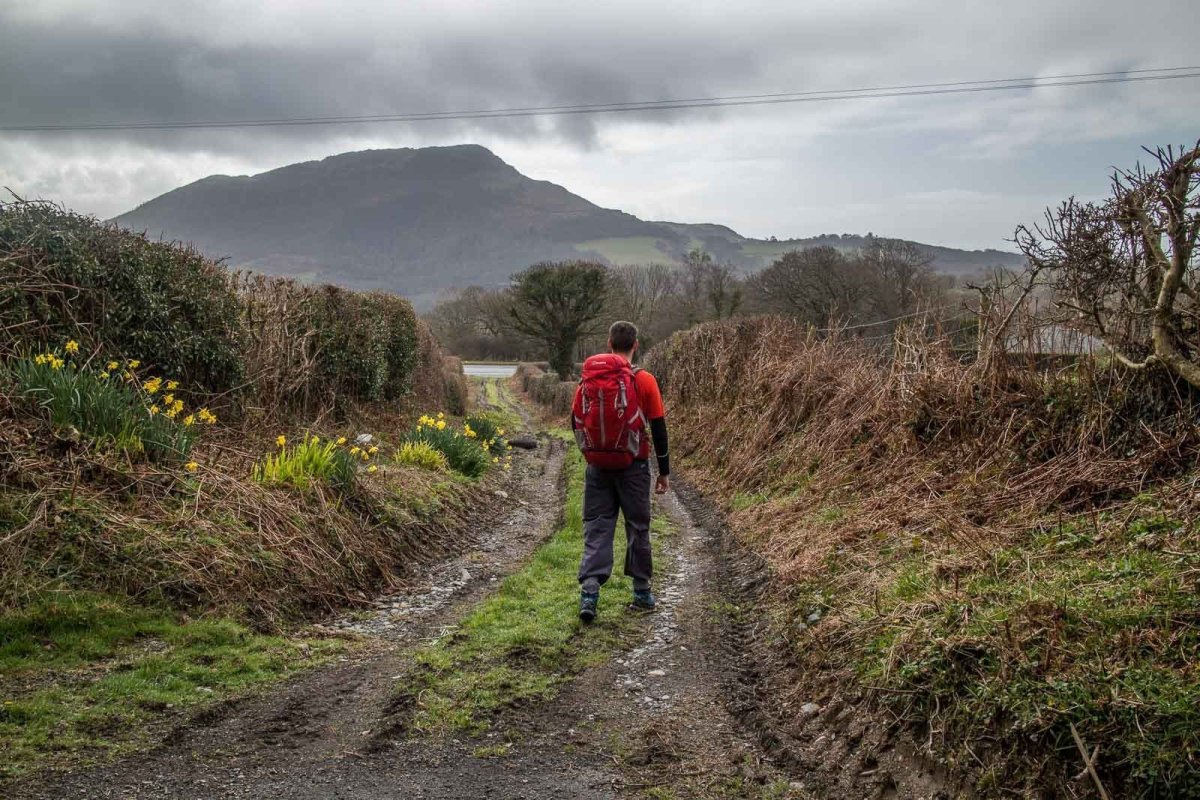 Easier Hill Walks in Snowdonia and North Wales - Moel y Gest