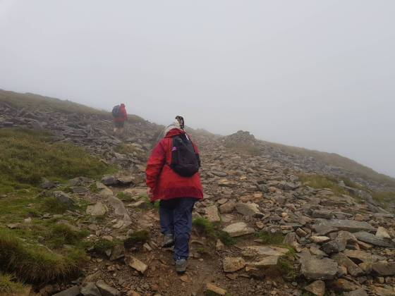 cader_idris_pony_path_16