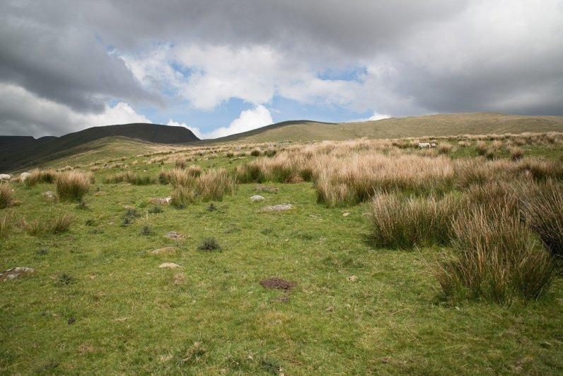 Clogwyn y Gwin Path and Maesgwm (103 of 135)
