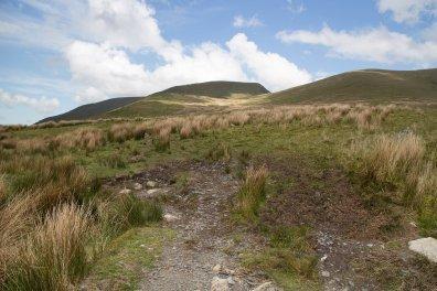 Clogwyn y Gwin Path and Maesgwm (108 of 135)