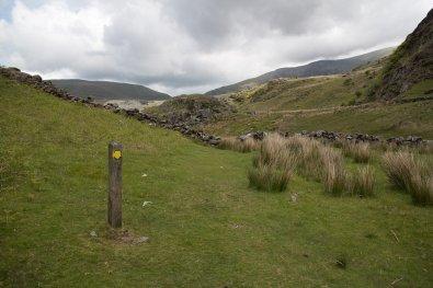 Clogwyn y Gwin Path and Maesgwm (67 of 135)