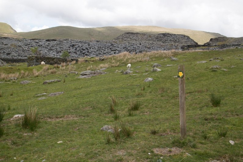 Clogwyn y Gwin Path and Maesgwm (82 of 135)