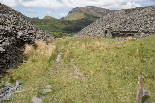 Clogwyn y Gwin Path and Maesgwm (90 of 135)