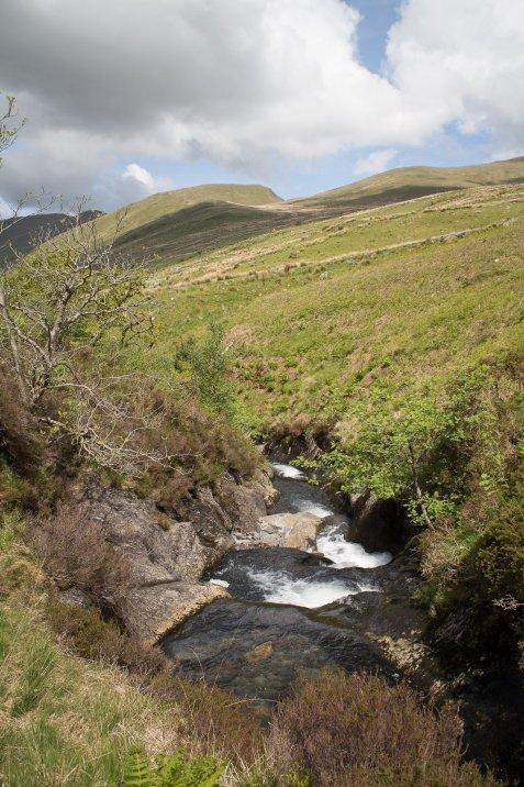 Clogwyn y Gwin Path and Maesgwm (98 of 135)