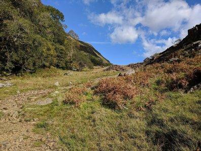 lon gwynant snowdonia (103 of 232)