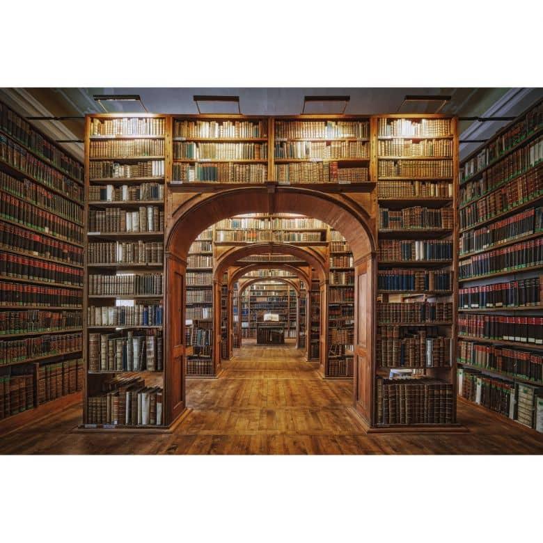 papier peint photo aurednik la bibliotheque
