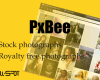 PxBee review