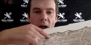 Termite Damaged Drywall