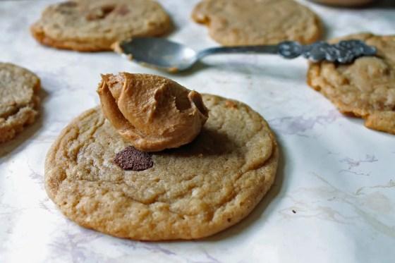 Best Biscoff Chocolate Chip Cookies 7--061913