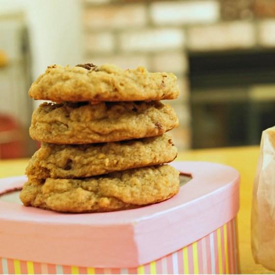 Graham Cracker Chocolate Chip Cookies 4--082013