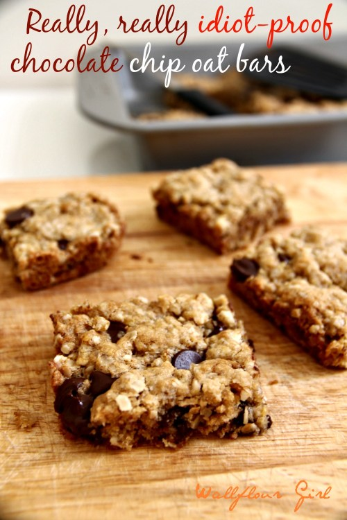 Idiot-Proof Healthy Chocolate Chip Oat Bars 17--012214