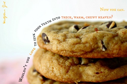 Favorite Thick and Chewy Chocolate Chip Cookies 21--021014