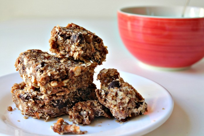 Raw Salted Chocolate Oat Healthy Bars with Dates and Coconut 8--100414