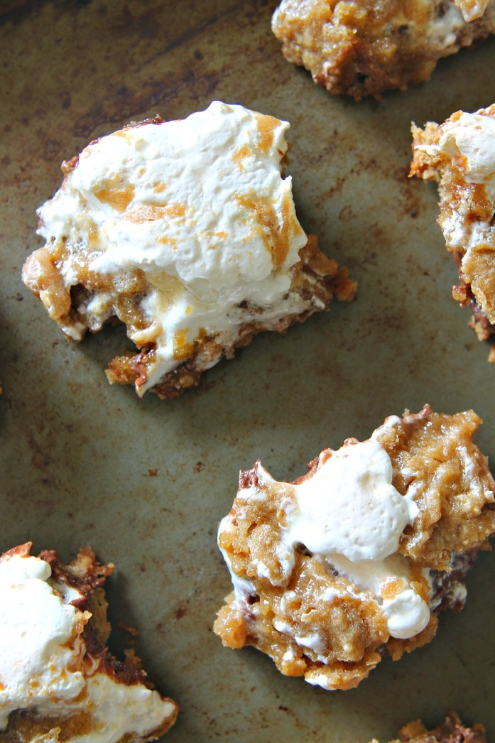 S'more-Bars 15--052515
