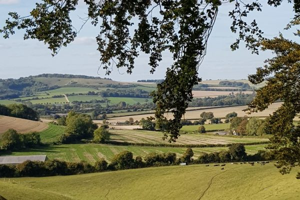 Superb view of rolling fields across the meon Valley at Wallops Wood Cottages Wallops Wood