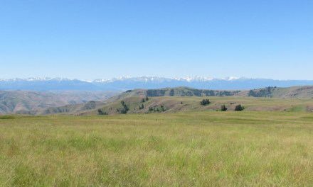 630 acres of far edge of Zumwalt Prairie