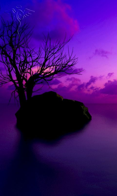 480x800 mobile phone wallpapers download - 94 - 480x800 ...