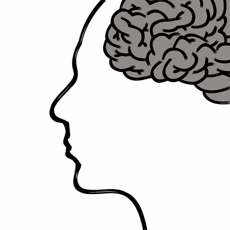 Scarabocchiare facce emozioni mano emozione fatto. Carta Da Parati Psicologia Testa Acconciatura Linea Artistica Linea Cervello Cervello Libro Da Colorare Orecchio 1447614 Wallpaperkiss