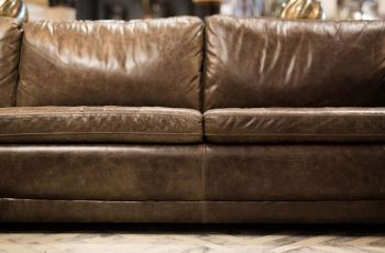 Shop Modern Couch