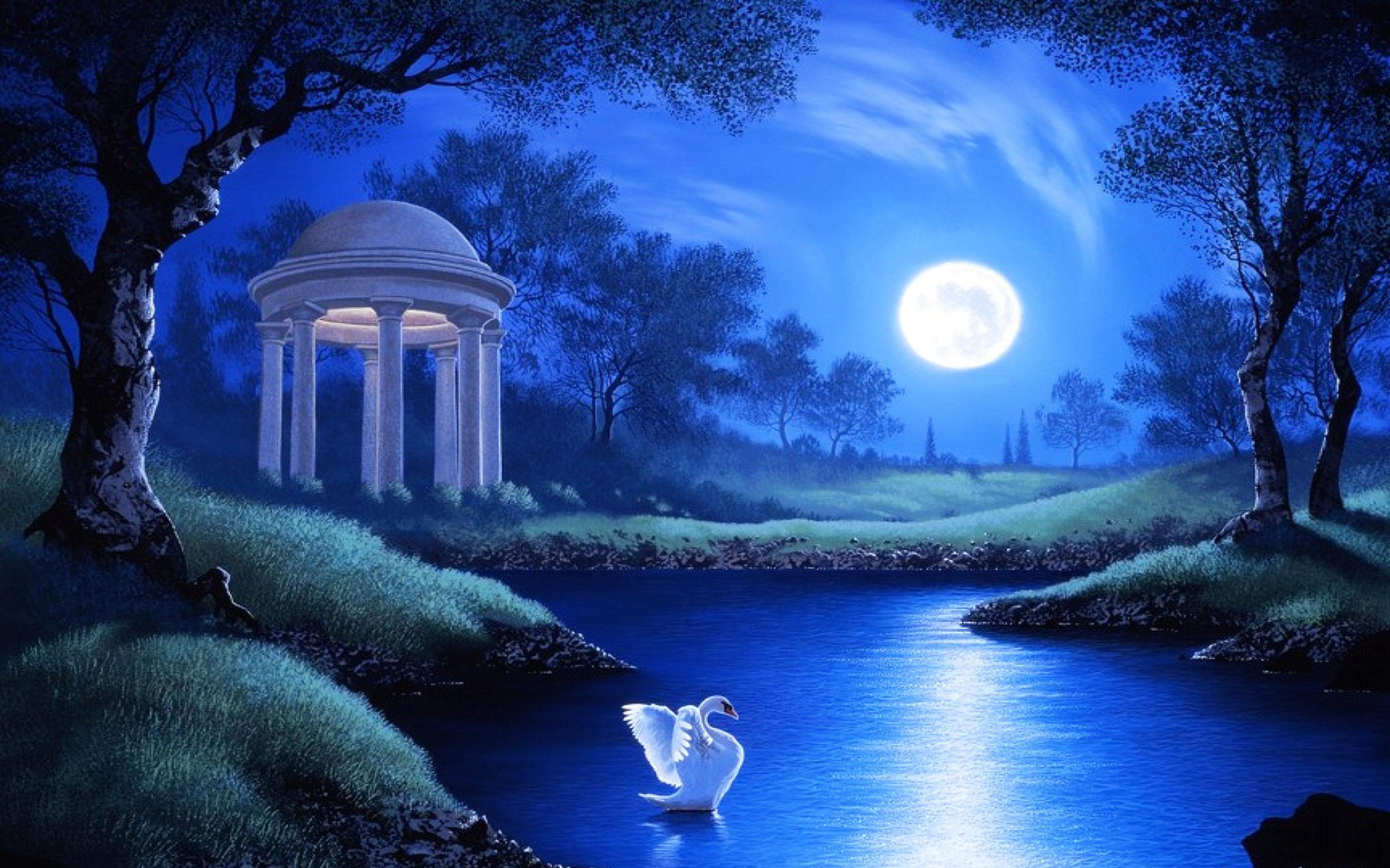 Learn how to tell if your favorite beauty products are ma. Swan Lake Night Full Moon Trees Grass Hd Wallpaper