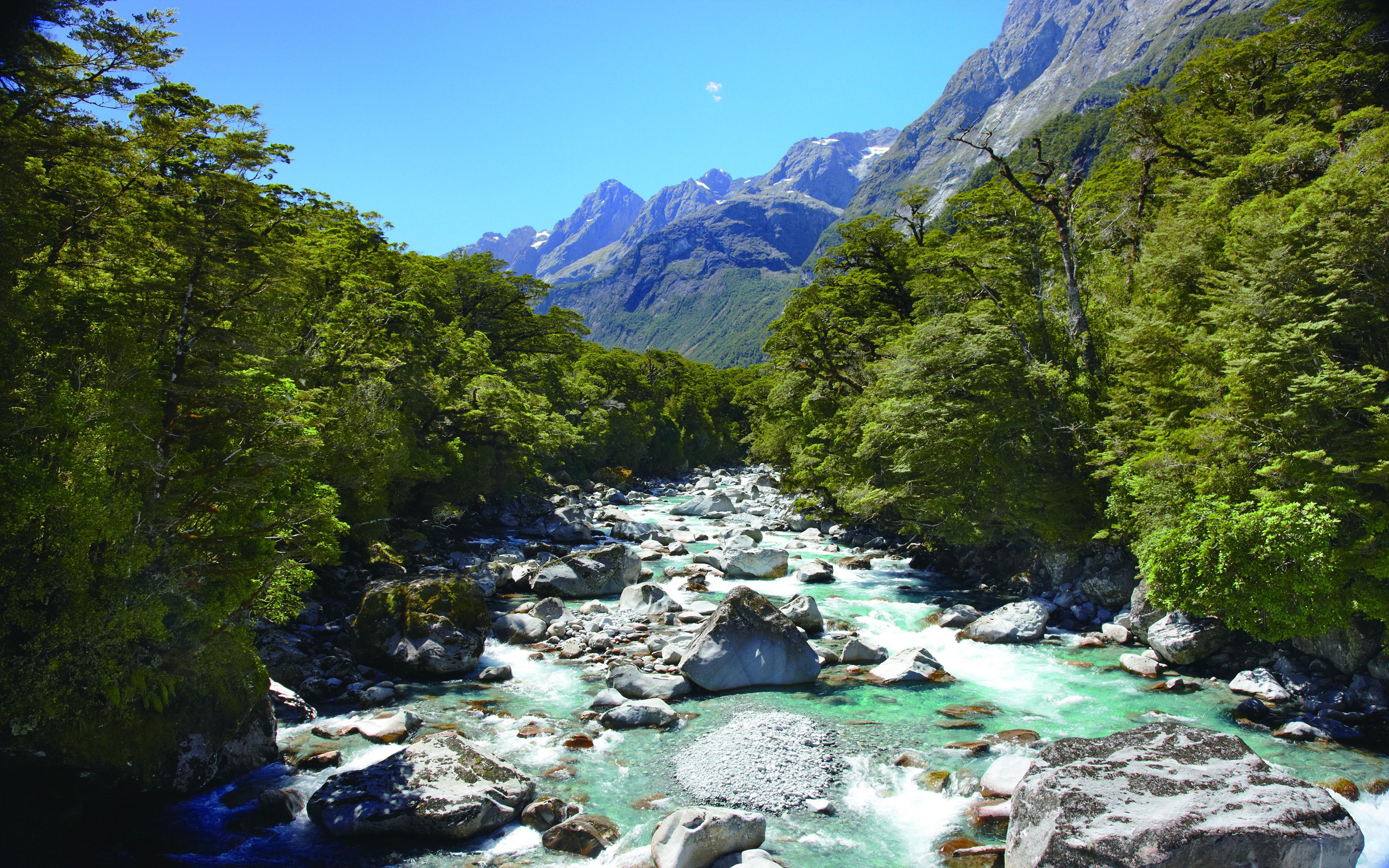 Hollyford River Upper Tech New Zealand